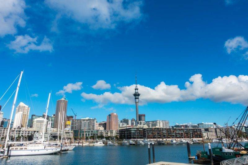 View on Auckland harbour