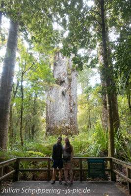 Kathi and Julian in front of a big kauri tree