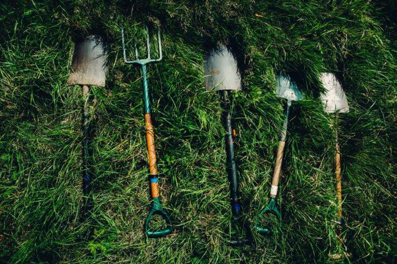 Shovels waiting for their next wwoofing use