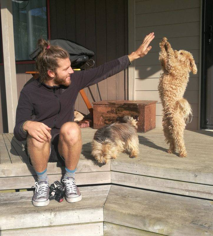 High five with awesome animals