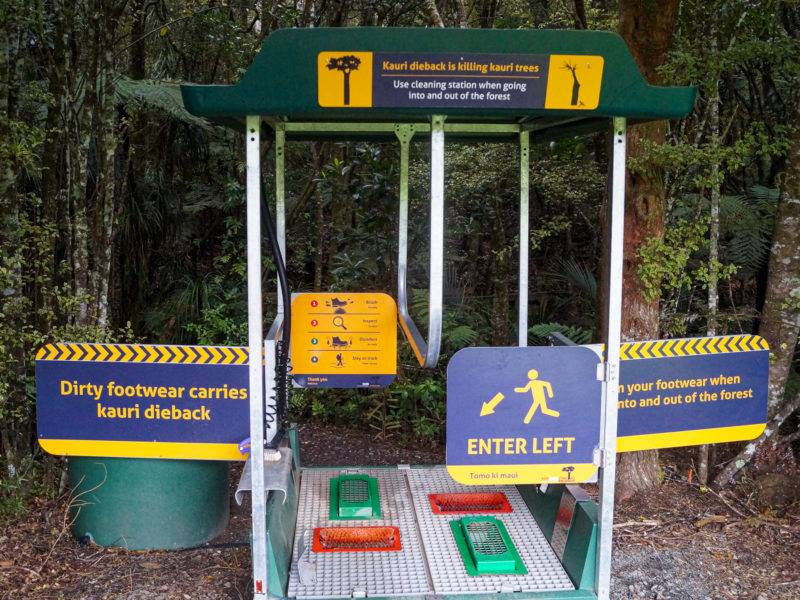 Cleaning station against Kauri Dieback disease
