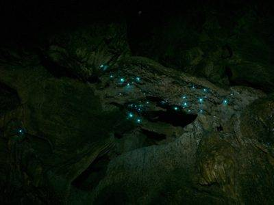 Fireflies in the abbey caves