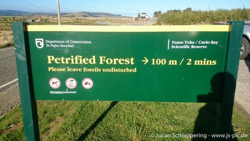 Signpost to the petrified forest