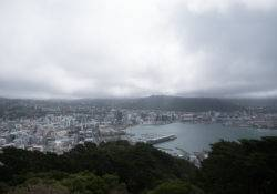 Mount Victoria Lookout View