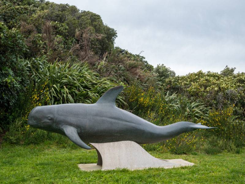 The dolphin statue at french pass - Pelorus Jack the white dolphin