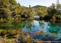 Te Waikoropupu Springs New Zealand