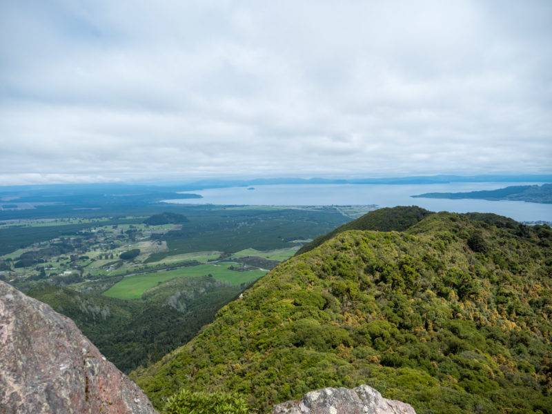 View from the Mount Tauhara Summit