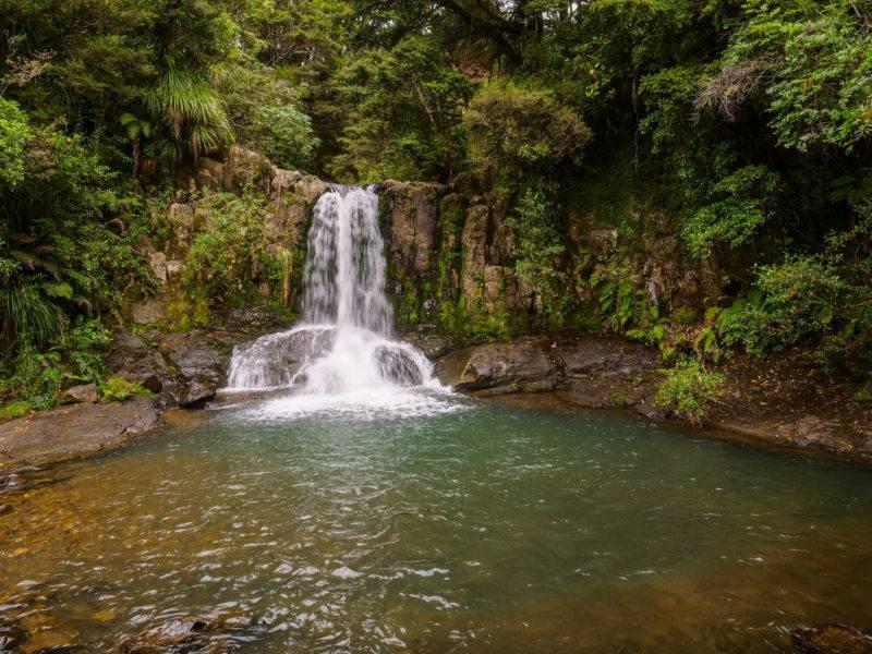 Waiau Waterfall Coromandel